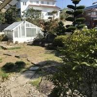 荒尾市川登 平家建住宅のサムネイル