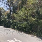 大牟田市田隈 売土地 区画1
