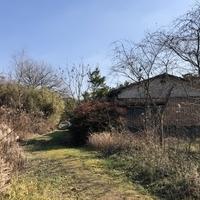 荒尾市下井手 売土地のサムネイル