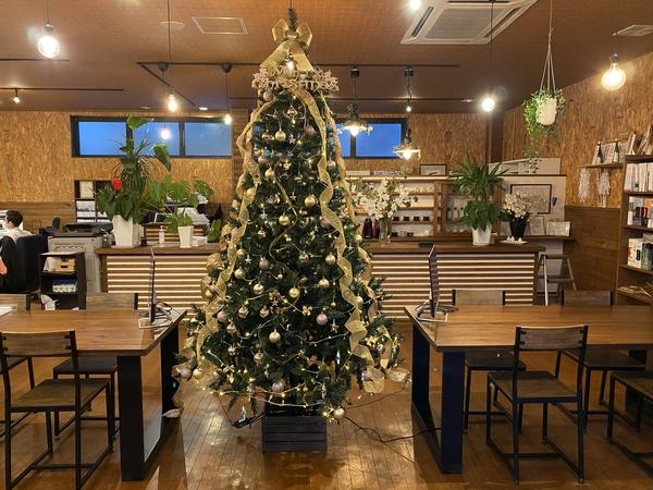 クリスマスツリー♪ -大牟田市荒尾市の不動産売買専門-